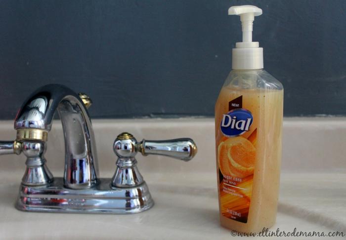 dial-sugar-cane-husk-hand-soap.jpg