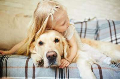 razas-de-perro-portada