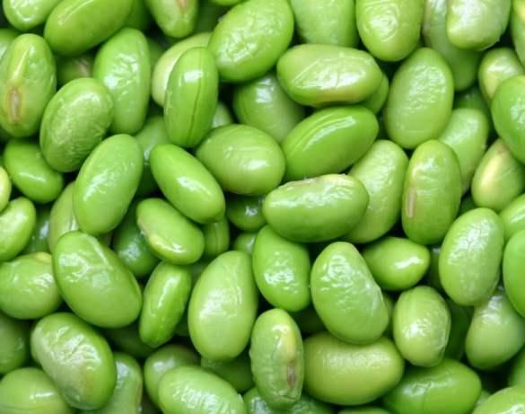 La importancia de las Proteínas para bajar de peso
