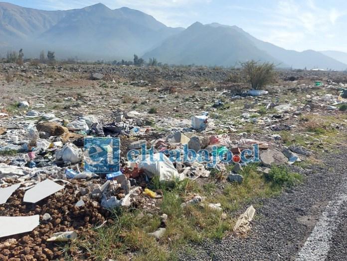Diversos lugares se han convertido en verdaderos basurales que estropean la calidad de vida de los habitantes del sector.