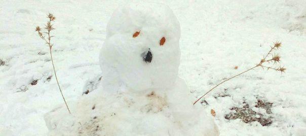 Haciendo muñecos de nieve