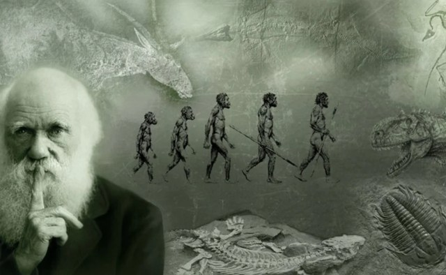 """La teoría de la evolución"""" de Charles Darwin cumple 157 años"""