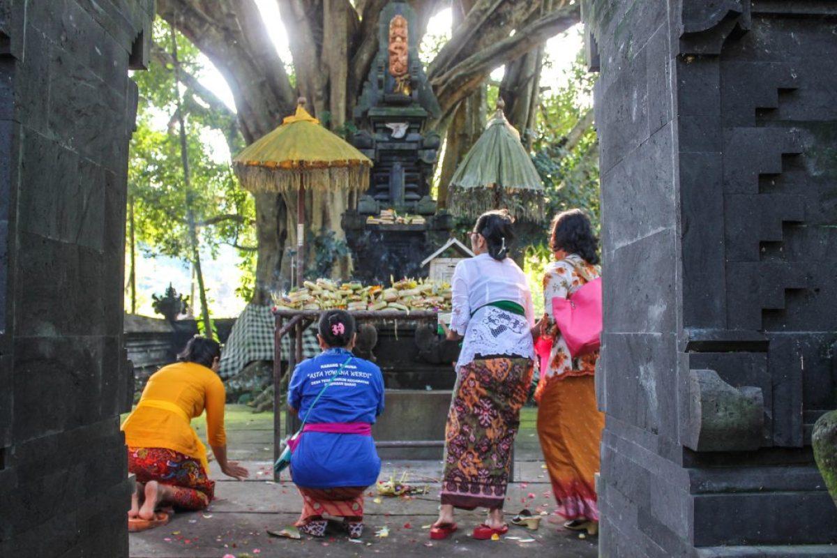 Bali con conductor - Día 1-13