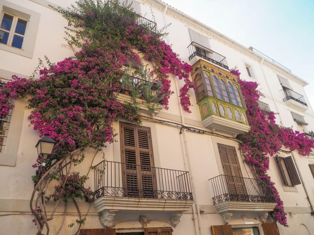 La Marina en Ibiza