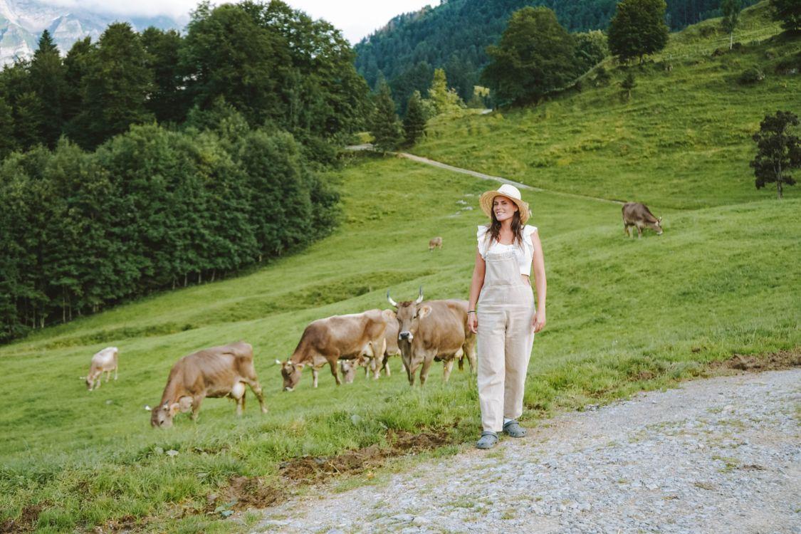 Granja en Appenzell