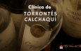 Clínica de Torrontés Calchaquí
