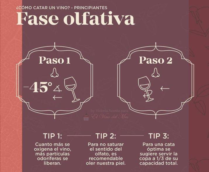 Cómo se cata un vino - Fase olfativa