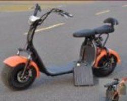 Купить электробайк Citycoco со съемным аккумулятором ElWinn CCS-181