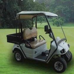 Электро гольфкар купить. Електро гольфкар купити