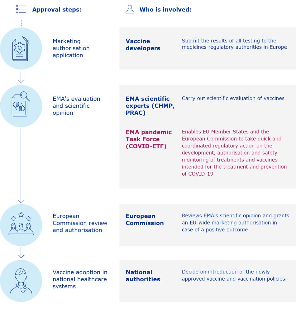 processi di approvazione dei vaccini