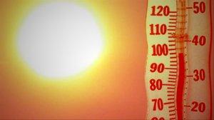 consigli per affrontare al meglio il grande caldo