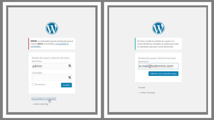 recuperar-la-contraseña-de-wordpress-por-correo-electronico