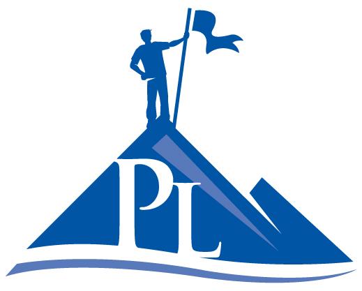 Proedice Limited's logo