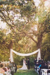 1000 Ideas About Wedding Trees On Emasscraft Org