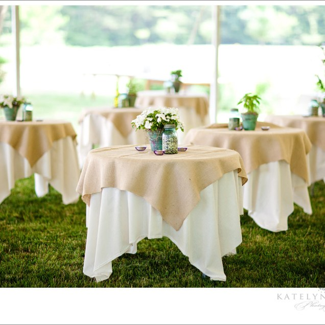 1000 Images About Potted Plants For Wedding On Emasscraft Org