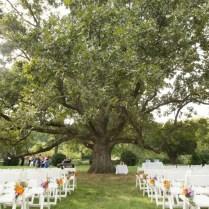 Capitol Wedding Jd & Trey's Personalized, Rustic Orange & Purple