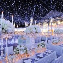 Decoration Winter Wedding Decorations