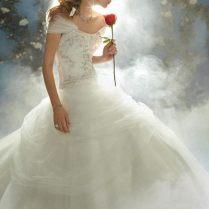 Disney Princess Wedding Dresses Belle