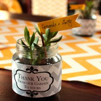 Give Your Guests Itty Bitty Succulents In Teeny Tiny Jars