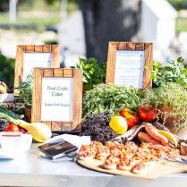 How To Chose The Best Wedding Caterer For Your Big Day