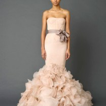 Vera Wang Champagne Wedding Dresses Picture Ideas With Wedding
