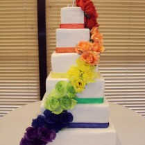 1000 Images About Rainbow Cakes On Emasscraft Org