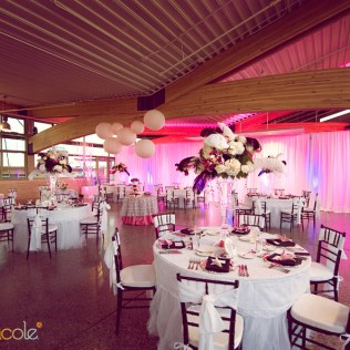 1000 Images About Vegas Wedding
