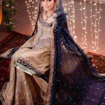Quality Options Of Pakistani Wedding Dress Best Design Of