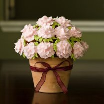 Top Cupcake Bouquets