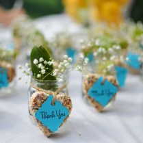 Wedding Favors Fashion Plants Wedding Favors Gift Ideas Flowers