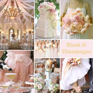1000 Ideas About Champagne Wedding Colors On Emasscraft Org