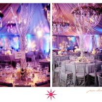 1000 Images About Winter Wonderland Anniversary Party Theme On