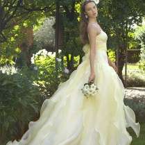 1000 Images About Yellow & Gold Wedding Gowns On Emasscraft Org