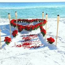 17 Images About Beach Wedding Ceremony On Emasscraft Org