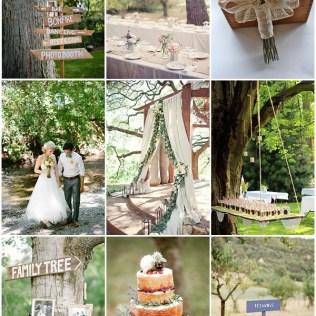 Backyard Bbq Wedding Ideas