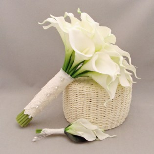 Compare Prices On Flower Calla Lily
