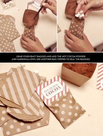 Diy S'mores And Hot Cocoa Kit