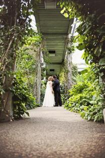 Intimate Weddings At Cambridge Butterfly Conservatory