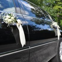 Pictures For Lakeview Limousine Service, Chicago Airport Limo, O