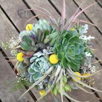Bridal Bouquet, Air Plants And Succulents With Craspedia, Blue