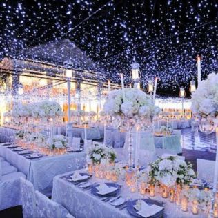 Outstanding Winter Themed Wedding Decorations Decoration Winter
