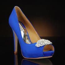 Photo Credit Heelscompin It Royal Blue Wedding Shoes With