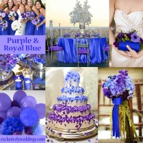 Purple And Royal Blue Wedding – Acgs
