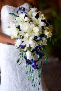 17 Best Ideas About Delphinium Bouquet On Emasscraft Org