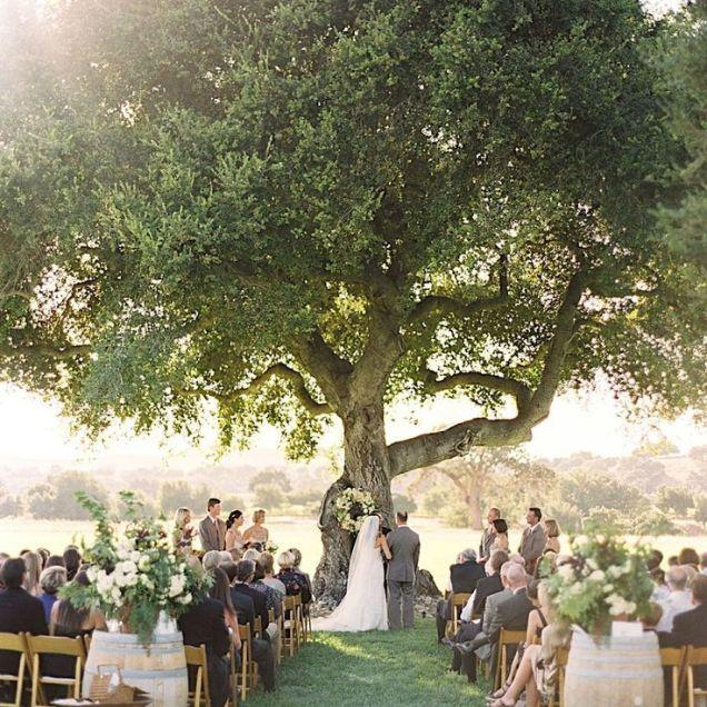 25 Best Ideas About Outdoor Weddings On Emasscraft Org