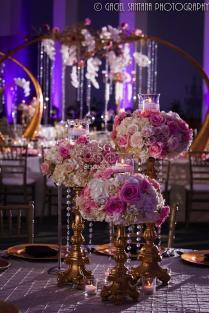 Alisha Ameet, Wedding Reception, Savannah, Georgia, Suhaag Garden