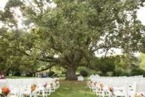 An Outdoor Wedding Ceremony Under A Gorgeous Tree From A Diy