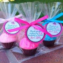 Cupcake Soaps (10 Favors)