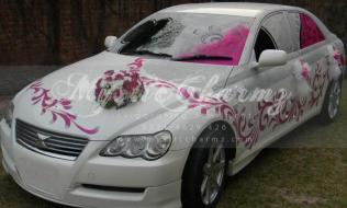Diy Wedding Car Decorating Ideas Youtube Wedding Car Just