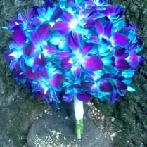 Best Blue Orchid Wedding Bouquets Photos